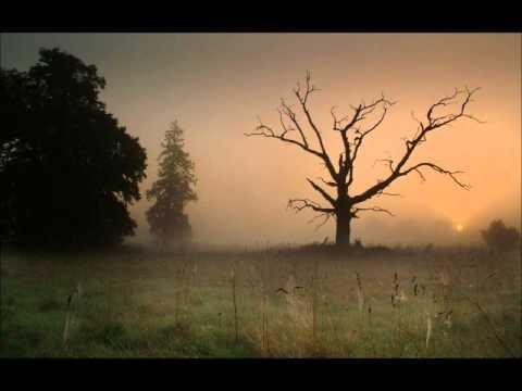Redbird Moonshiner Full Song