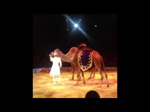 Big Apple Circus: Metamorphosis Fall 2014