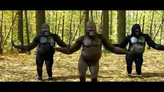download lagu Gorilla Dancing Galti Se Mistake Jagga Jasoos Song gratis