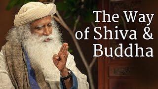 Download The Way of Shiva and Buddha 3Gp Mp4