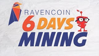 Raven Coin 6 Days Mining with Smithers