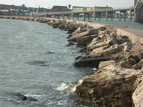 Corpus Christi Fishing on Corpus Christi  Tx Bay Fishing