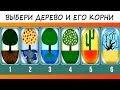 Психологический тест Вы мечтатель или реалист Выбери дерево и его корни mp3