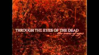 Watch Through The Eyes Of The Dead Beneath Dying Skies video