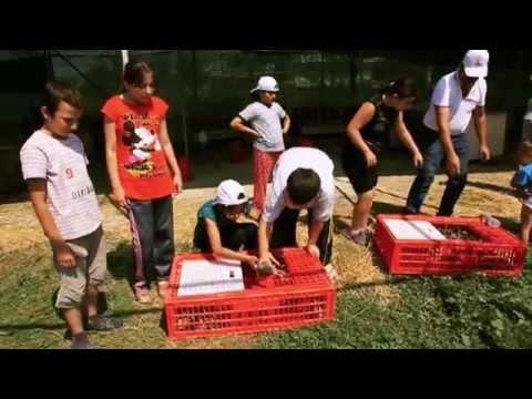 Sağdıçların Eğitim ve Rehabilitasyon Modeli Projesi