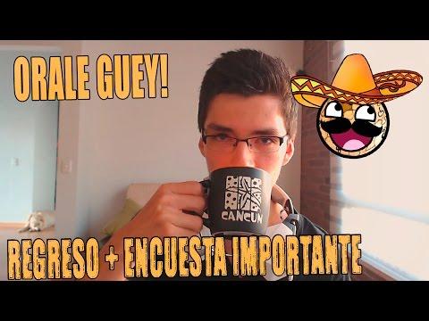 DE REGRESO!! + ENCUESTA NUEVAS SERIES (Importante)
