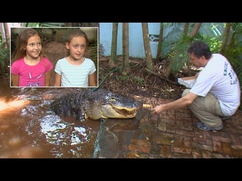 Father Lets His Brave 8-Year-Old Twin Daughters Feed Pet Alligator