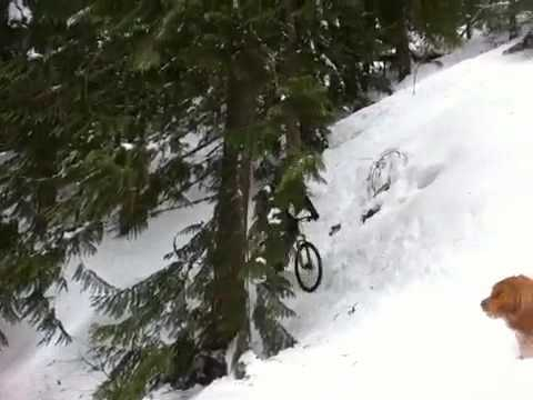 Curly snow Video