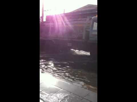 Flood Inspection Paholyothin (2)