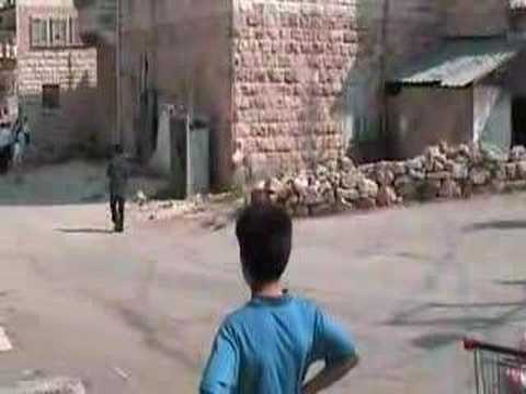 Settler attacks a Palestinian family in Hebron