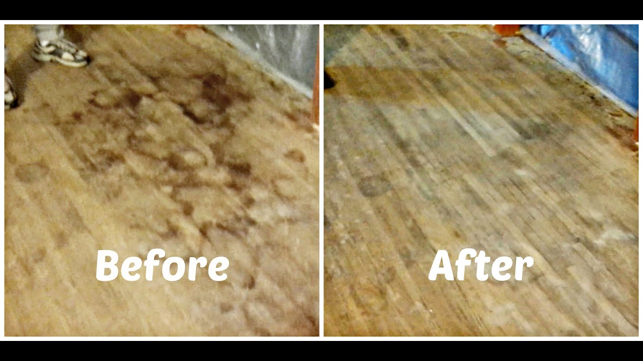 How to remove pet urine stains from hardwood floors youtube for How to clean floor stains