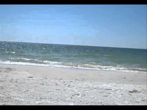 Metal Detecting Florida Beach