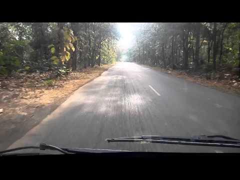Kalvai abhaya aranyam adilabad forest road