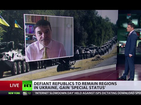 'E.Ukraine offensive went bad, too late for Donetsk, Lugansk 'special status'
