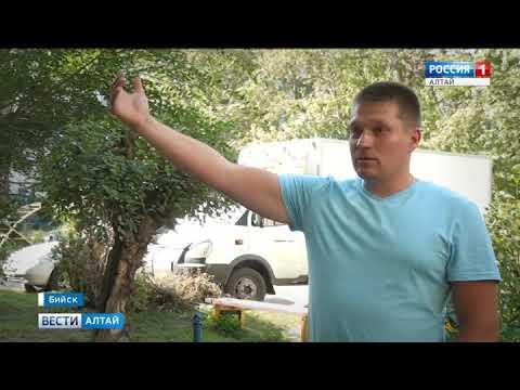 В Бийске местные жители напали на журналистов