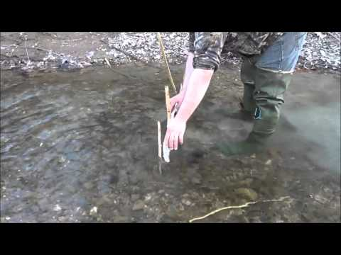 Beaver trapping using footholds and conibears  | Beaver Bandit, Andy Mormann