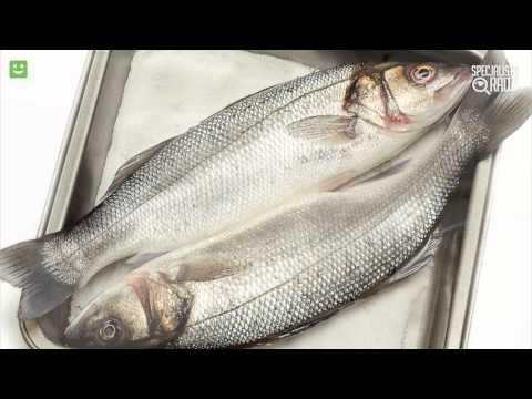 Ryby A Zdrowie [Specjalista Radzi]