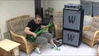 Download Flo Rida / Avicii - Good Feeling / Levels Bass Cover 3Gp Mp4