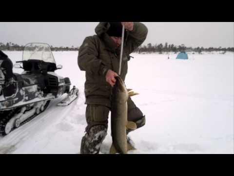 рыбалка на иргиз казахстан