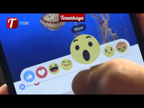 Facebooks New Reactions New Like Button