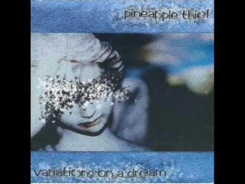 Songtext von The Pineapple Thief - Snowdrops Lyrics
