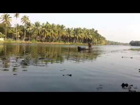Kuttanadu , Alapuzha video