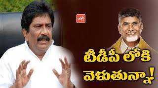 Sabbam Hari will Join in TDP? | AP Politics | CM Chandrababu Naidu