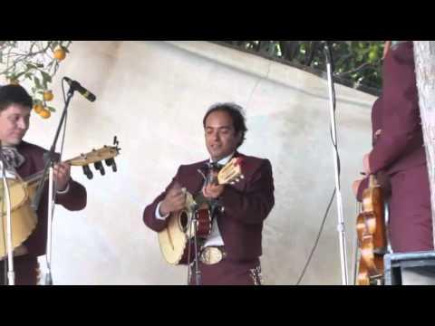 El  cascabel Mariachi  Juvenil Tecalitlan