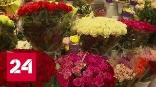 Раскрасить будни: россияне стали покупать цветы даже без повода - Россия 24
