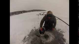 Ice Fishing Adventures ice fish Green Bay for  whitefish  2012/13 season