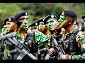 Marinos mexicanos/Mexican Navy