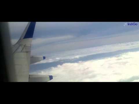 INDIGO AIRLINE  6E-313