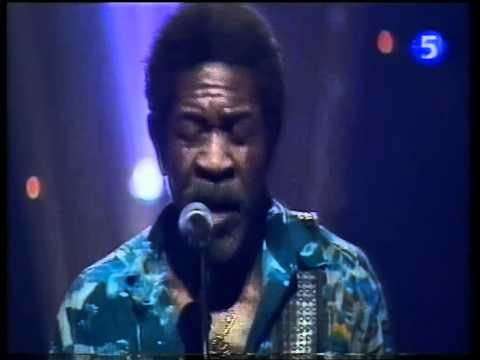 Luther Allison - Big City Blues [LIVE]