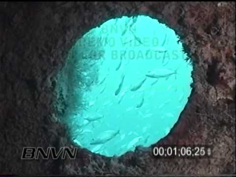 6/3/2001 Looe Key Florida - Adolphus Busch Wreck Video