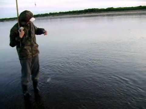 погода для того рыбака на речице