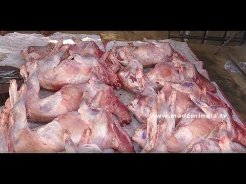Shahi Chicken Haleem شاہی چکن حلیم | World Best Ramzan Special Haleem | Making Of Chicken Haleem