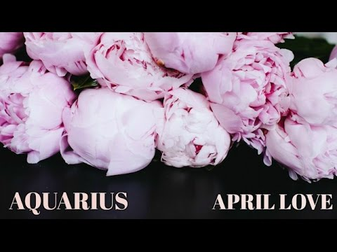 Aquarius April Love Tarot Reading 2017 - Slow Down To Move Forward
