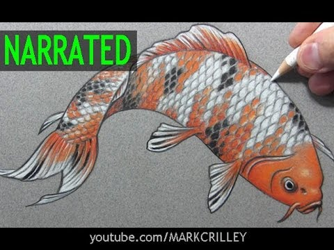How to Draw a Fish (