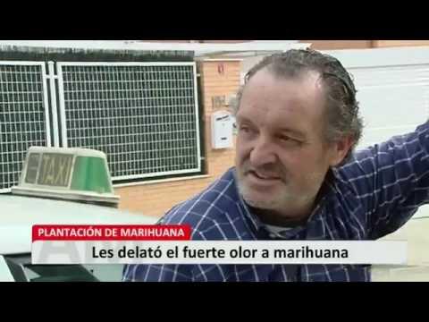 Operación antidroga en Rivas Vaciamadrid