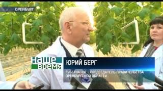 В Оренбурге начала работать экоферма «Кушкульские теплицы»