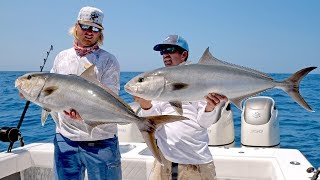 Absolutely INSANE Topwater Amberjack Fishing Action - 4K