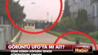 Gebze Teknopark'ta UFO