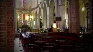 JS. Bach, Cantata Christen ätzet diesen Tag, BWV 63. Ricercar Consort / Philippe Pierlot