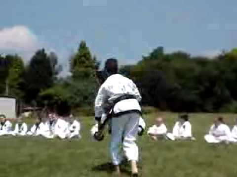 Tang soo do Self defence at demo Image 1
