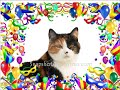 Happy New Year Cat Talking... - Fun & Humor ecards - New Year Greeting Cards