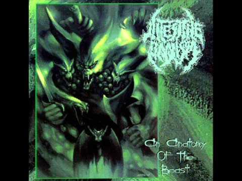 Intestine Baalism - Burn Thou In Effigy