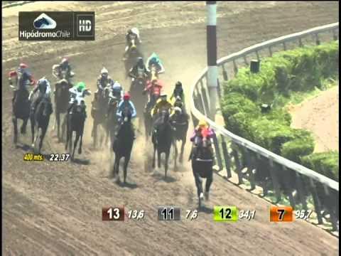 Vidéo de la course PMU PREMIO CHAMULLO S.
