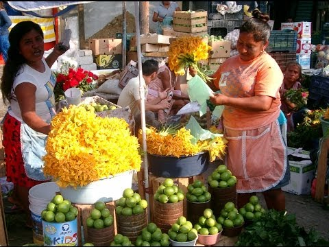 THE MARKET TOUR, EL MERCADO MUNICIPAL Acapulco, Video,  by Rudy Fregoso Tour By Van Tour Guide