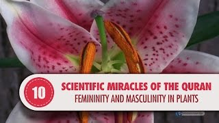 Video: In Quran 20:53, Trees and plants are  created in pairs of male & female - Quran Miracle