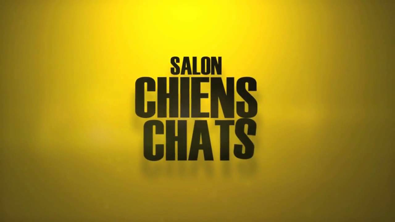 Salon chiens chats 2014 espace champerret youtube for Espace champerret salon